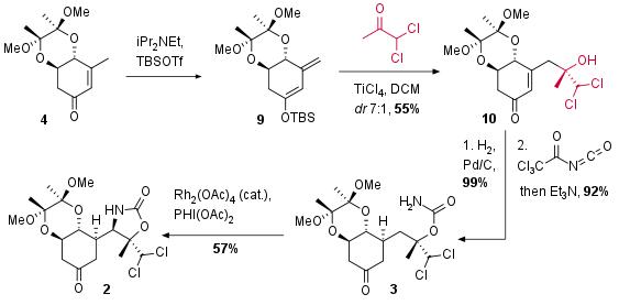 bactobolinA-3.png