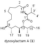 dysoxylactamA-nmr.png
