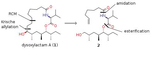 dysoxylactamA.png