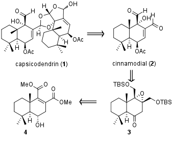 Capsicodendrin-1.png