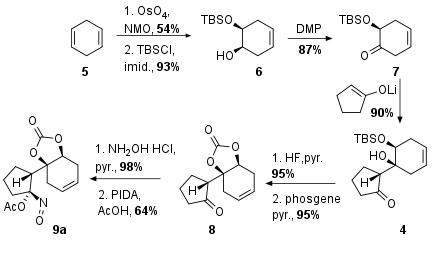 phyllantidine-2.png