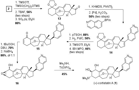cortistatin-nic-4.png