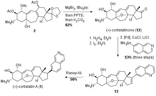 cortistatina-bar-4.png