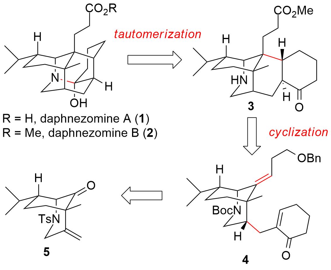 daphnezomine-1.png