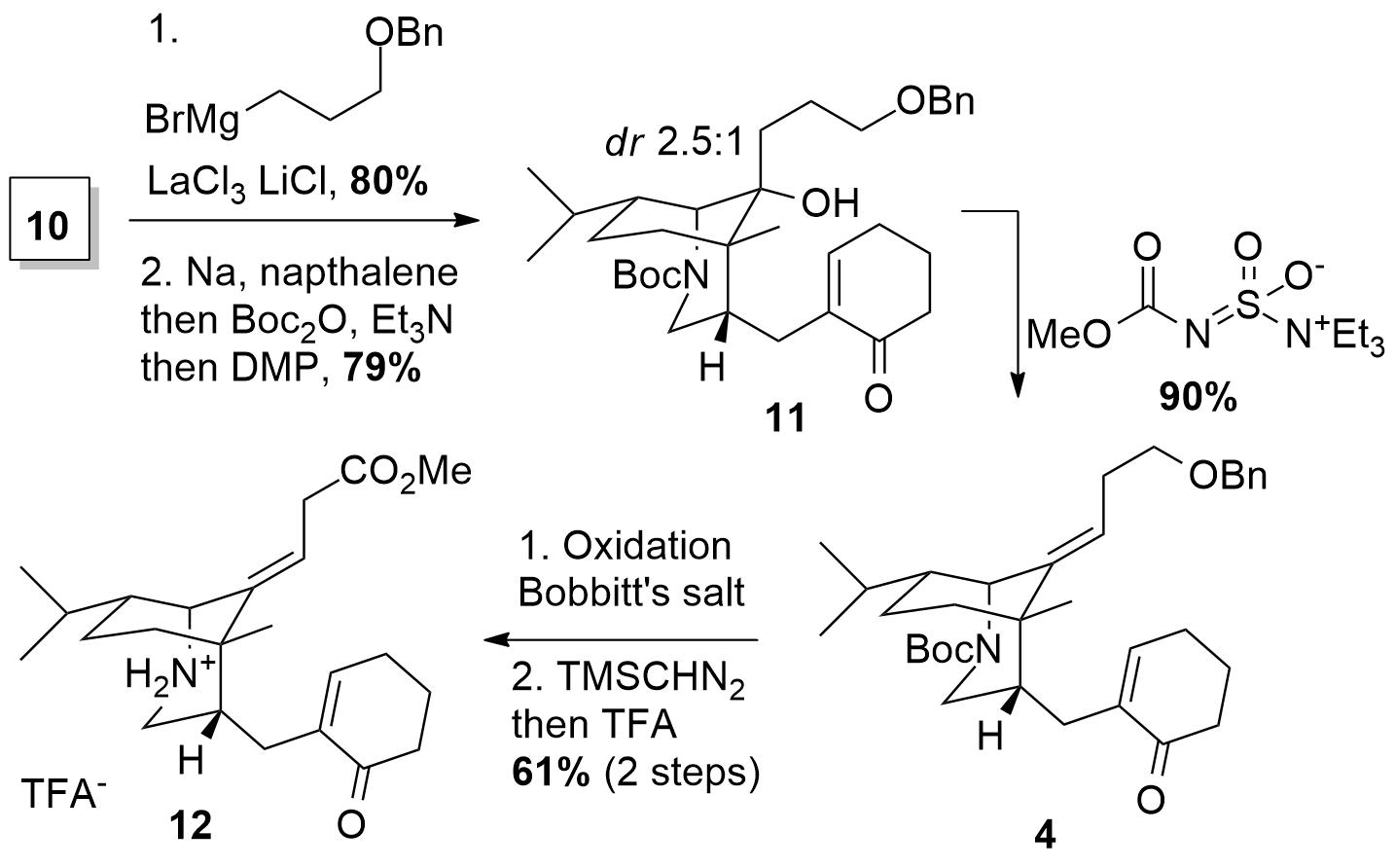 daphnezomine-3.png