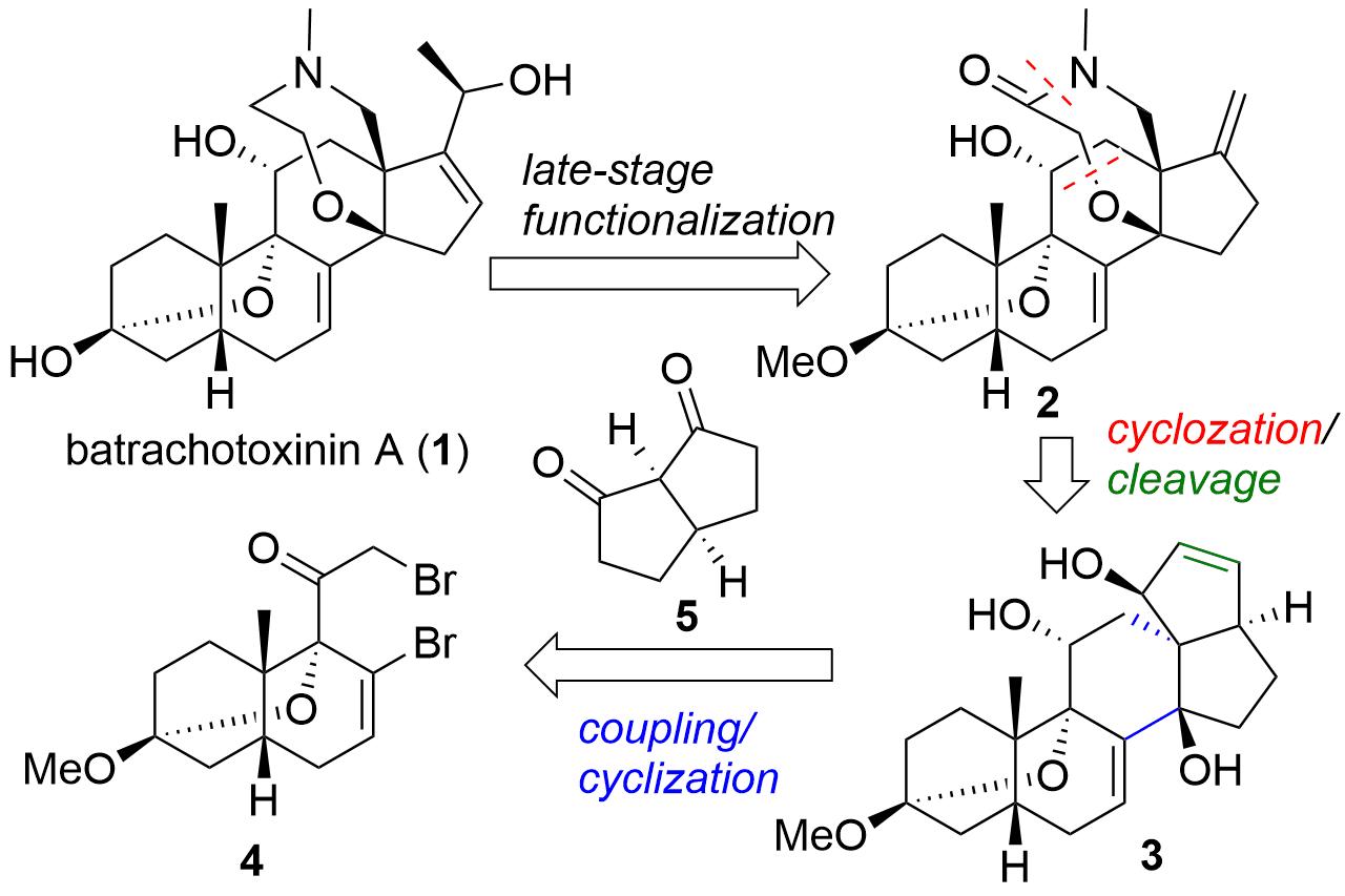 batrachotoxinin-1.png