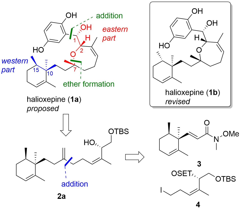 halioxepine-1.png