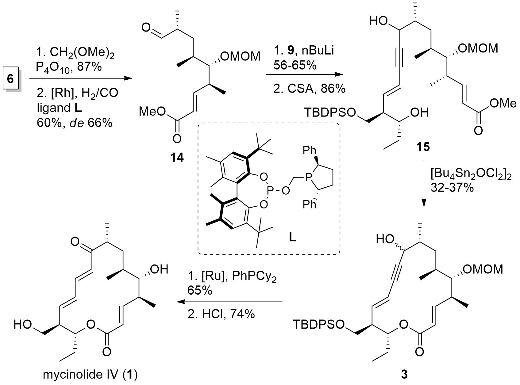 mycinolide-4.png