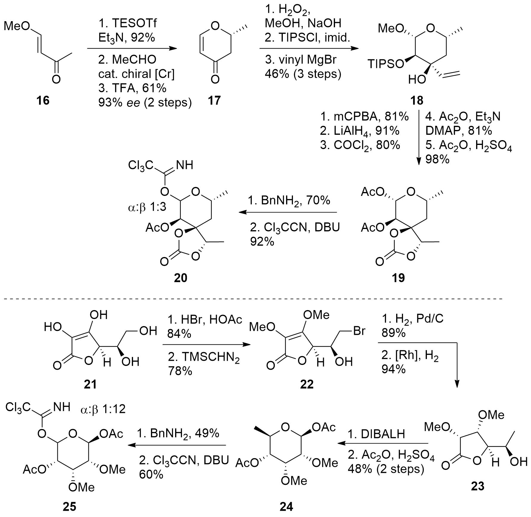 mycinolide-5.png