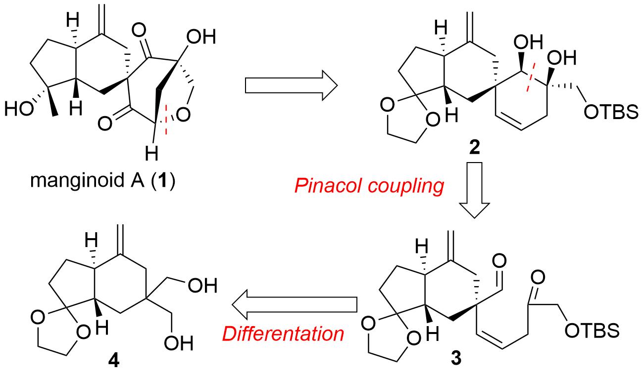 manginoid-1.png