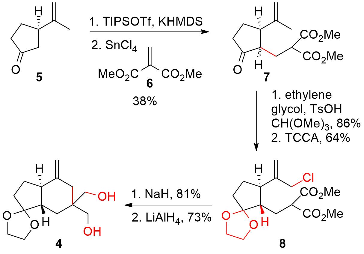 manginoid-2.png