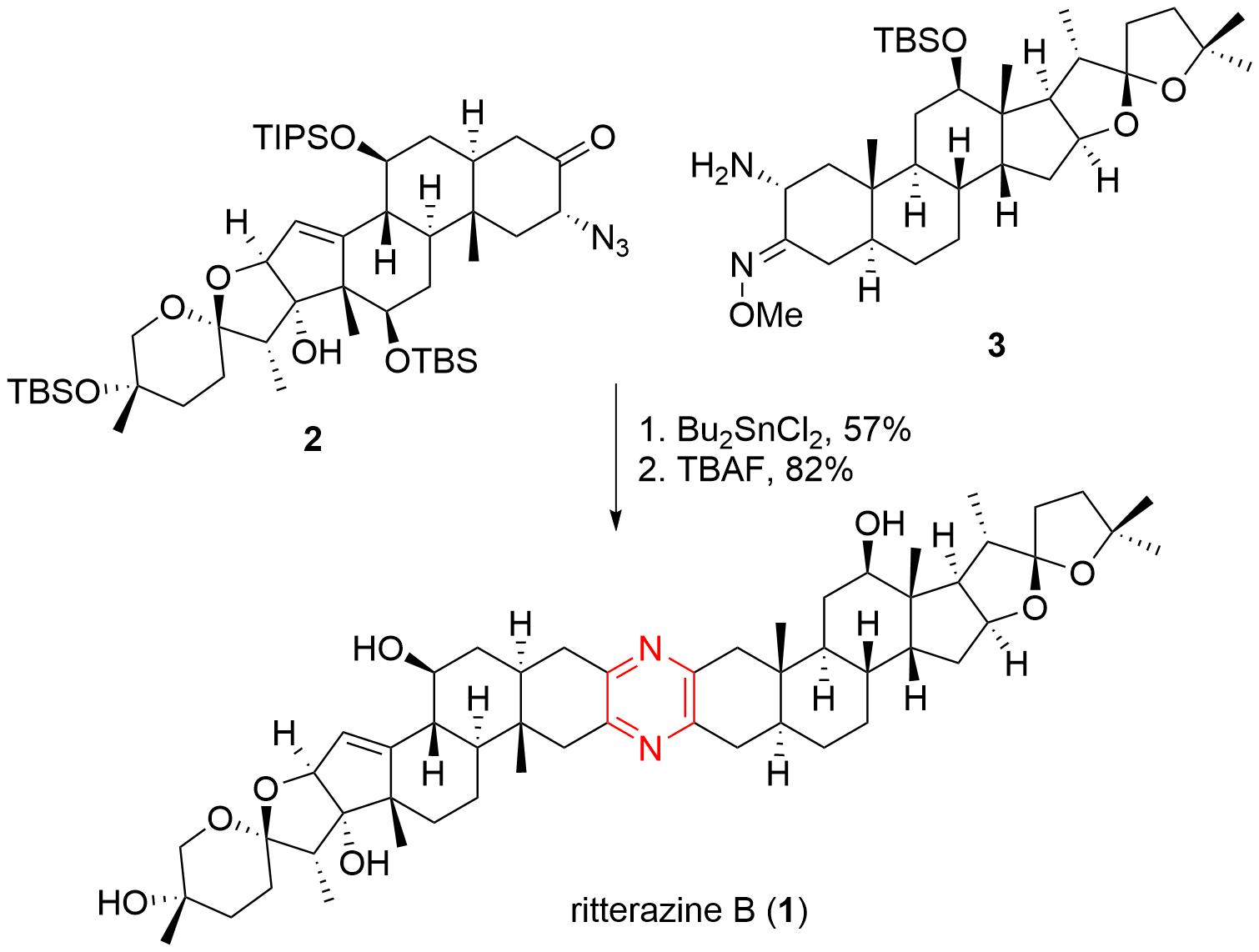 ritterazine-5.png